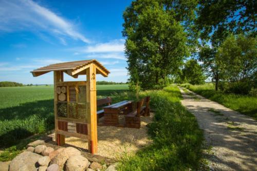 Na alei znajdują się 3 miejsca odpoczynku zławami itablicami otematyce historyczno-przyrodniczej.