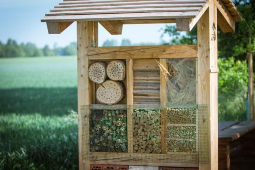 Domek dla owadów.